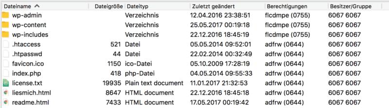 FTP WordPress Verzeichnis