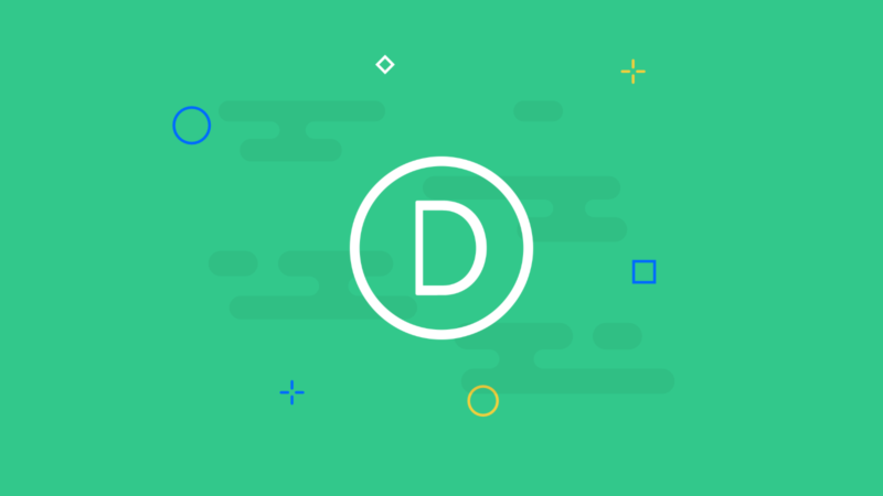 Divi Theme Test