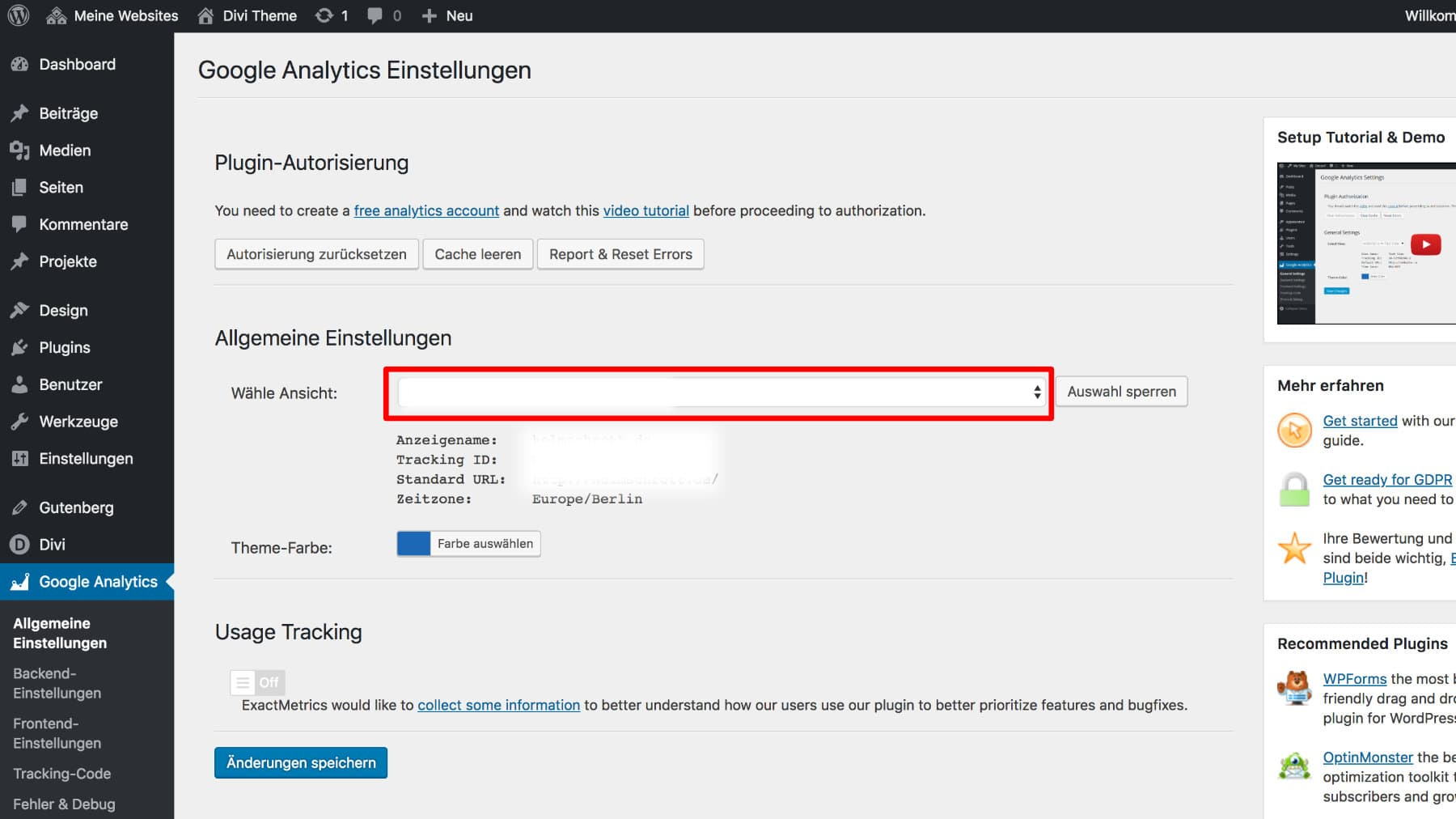 Google Analytics Dashboard for WordPress Einstellungen 2